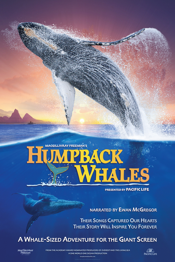 Humpback Whales online