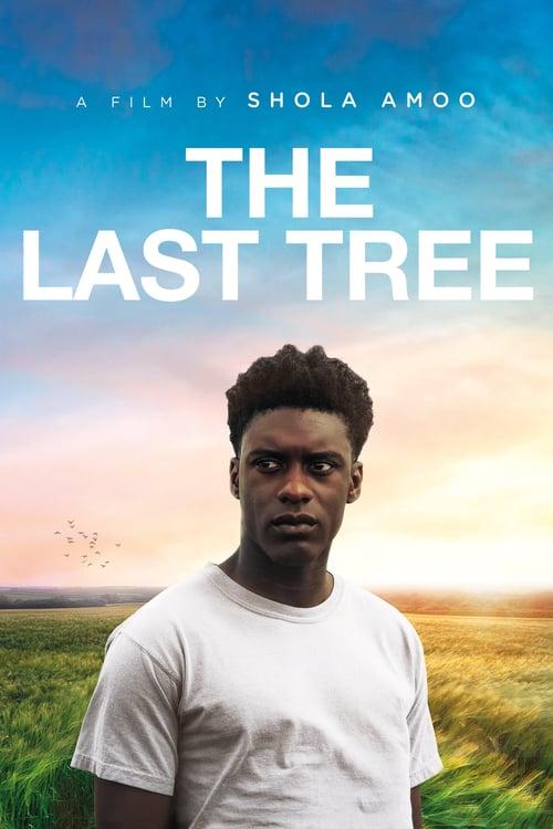 Poslední strom online