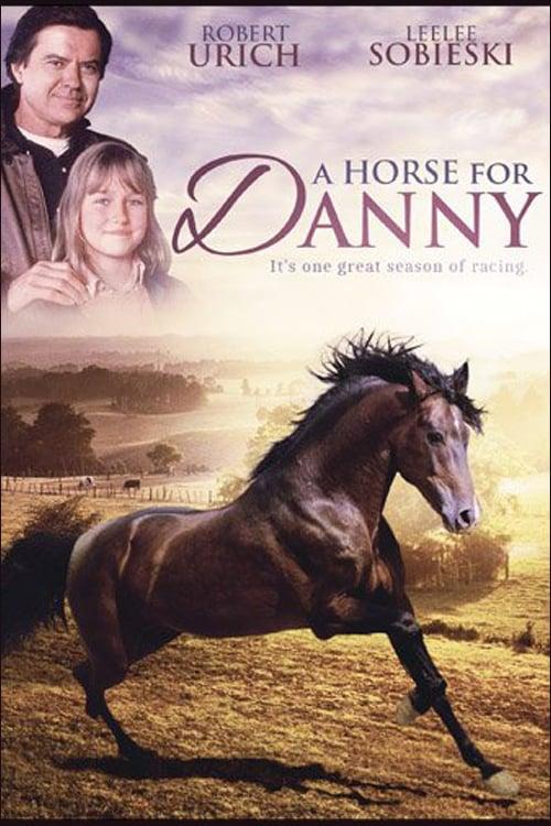 Kůň pro Danny online
