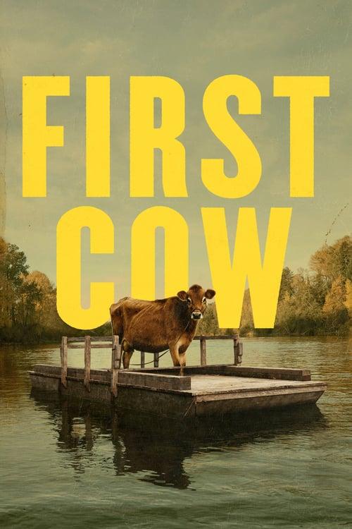 První kráva online
