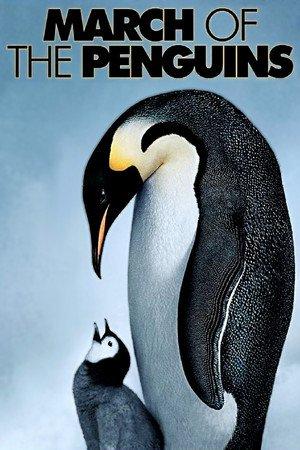 Putování tučňáků online