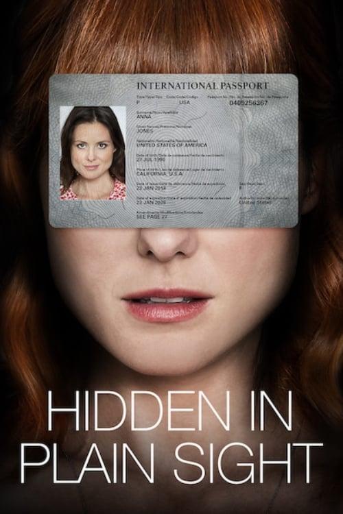Hidden in Plain Sight online