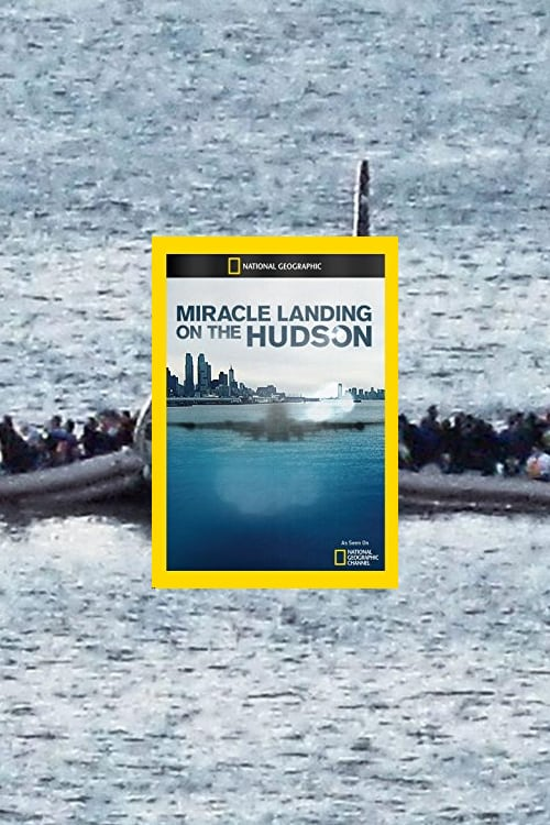 Miracle Landing on the Hudson online