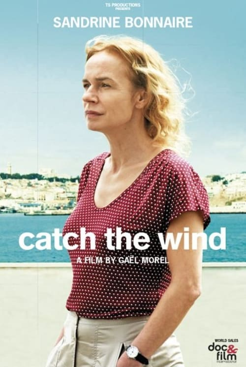Catch the Wind online
