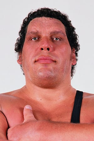 André the Giant filmy