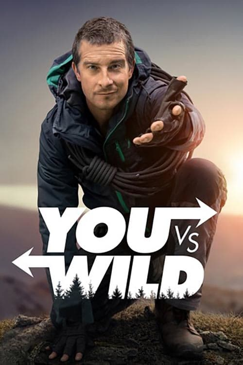 You vs Wild online