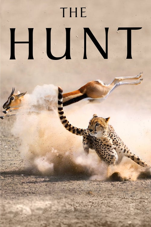 The Hunt online