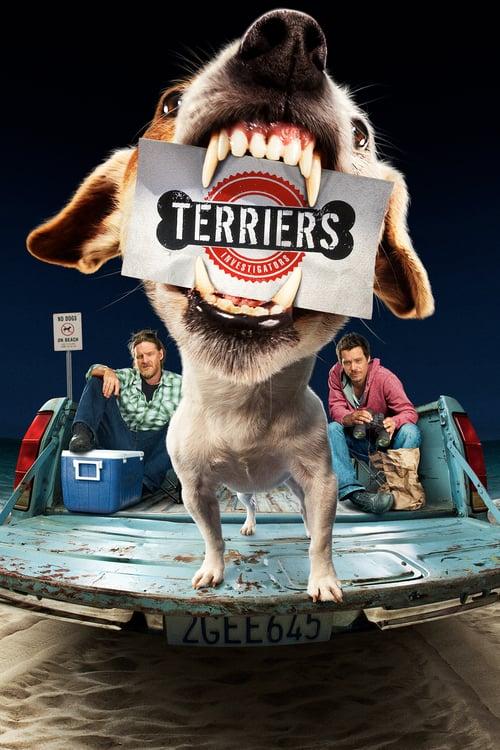 Terriers online