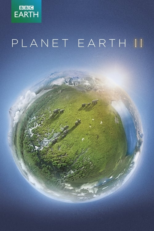 Zázračná planeta II online