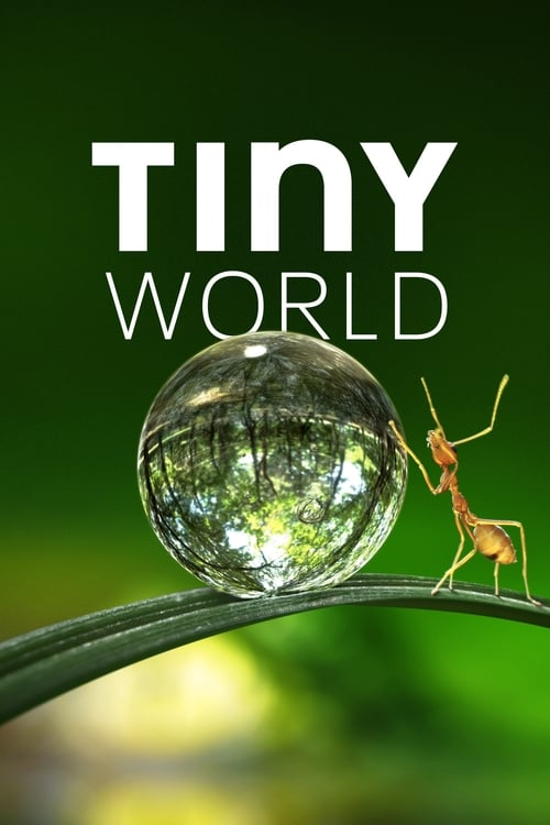 Tiny World online