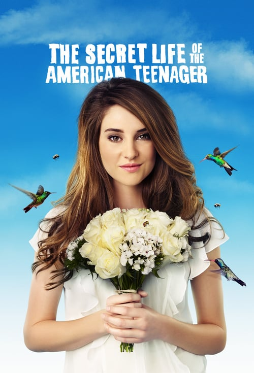 The Secret Life of the American Teenager online