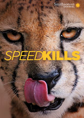 Speed Kills online