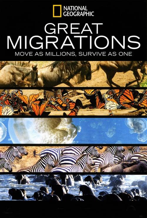 Great Migrations online