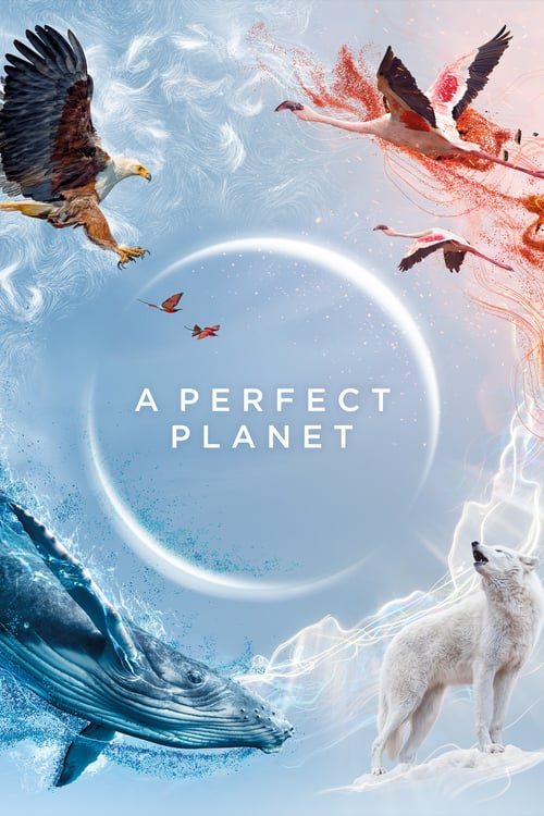 A Perfect Planet online