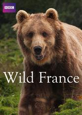 Wild France online