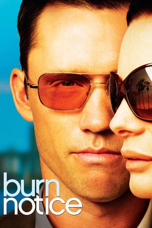 Burn Notice online