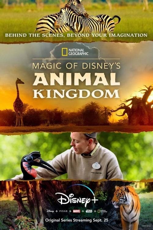 Magic of Disney's Animal Kingdom