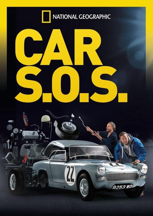 Car SOS online