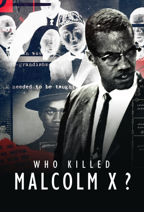 Who Killed Malcolm X? online