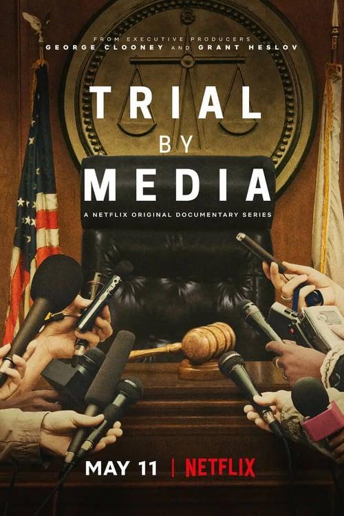 Soudní procesy v médiích online