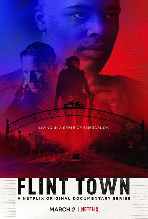 Flint Town online