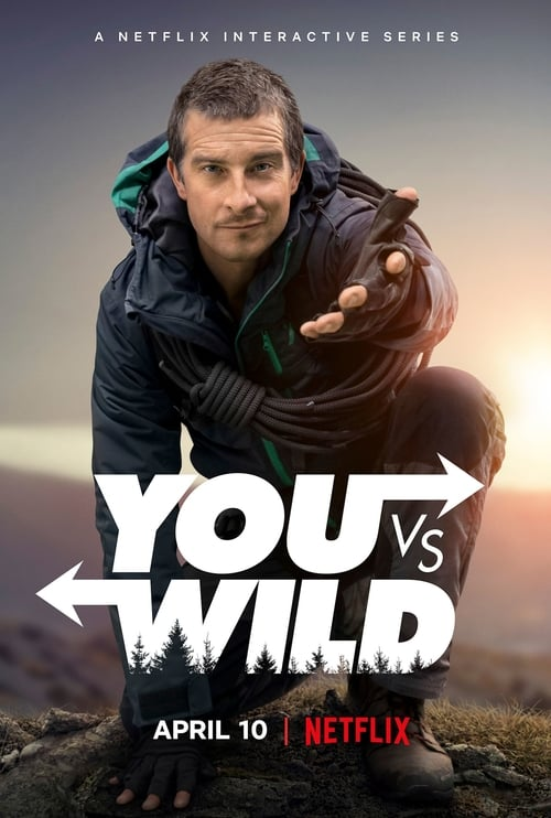 You vs. Wild online