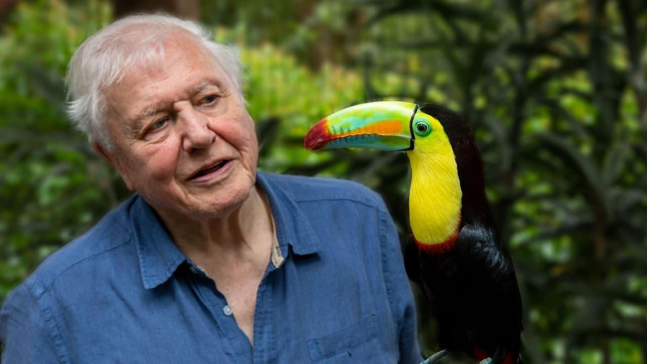 Život v barvě s Davidem Attenboroughem