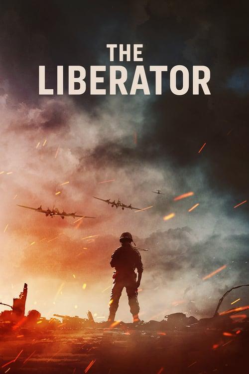 Liberator: Operace Avalanche online