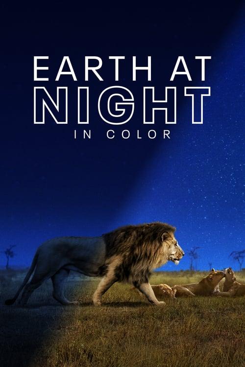 Noční planeta v živých barvách online
