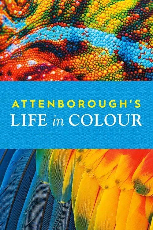 Život v barvě s Davidem Attenboroughem online