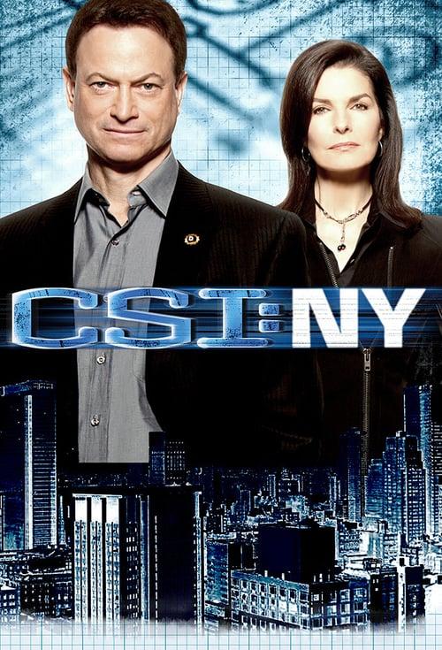 Kriminálka New York online