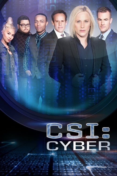 Kriminálka: Oddělení kybernetiky online