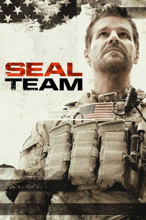 SEAL Team online