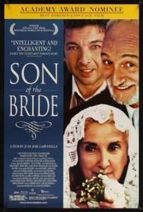 Syn nevěsty