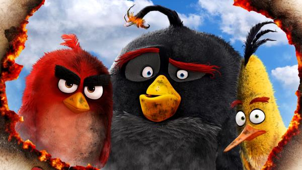Angry Birds ve filmu download