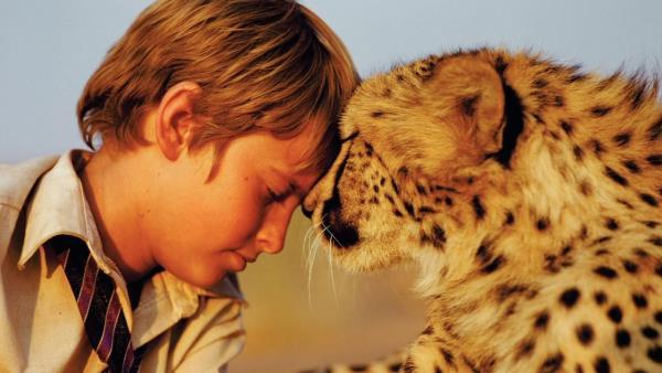Můj kamarád gepard