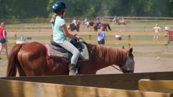 Horse Camp: A Love Tail