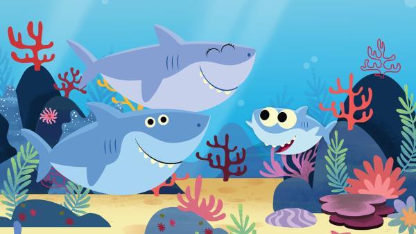 baby-shark-more-kids-songs-super-simple-songs