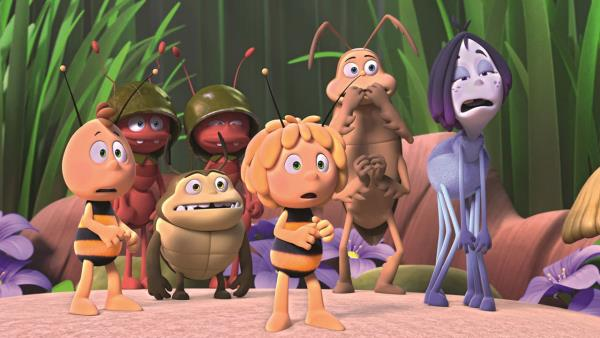 vcelka-maja-medove-hry