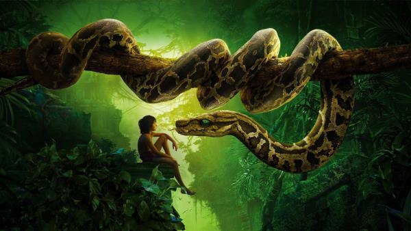 Kniha džunglí download