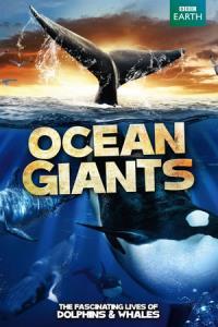 Ocean Giants