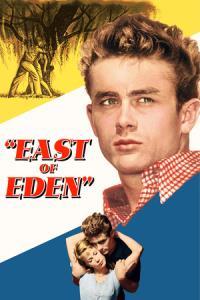Filmy 1955
