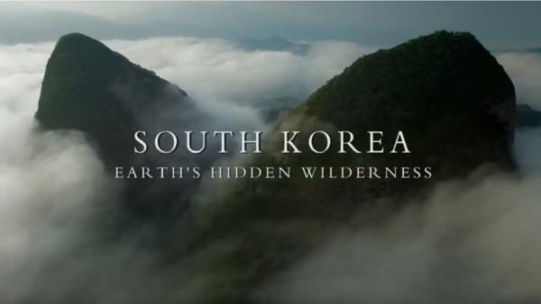 do-divociny-korea