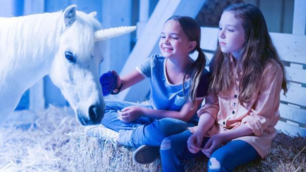 wish-upon-a-unicorn