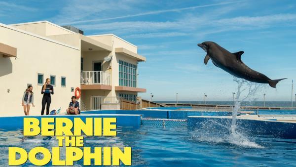 Můj kamarád delfín