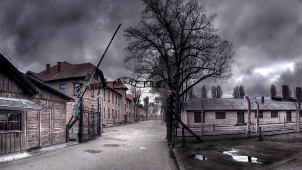 Auschwitz: The Nazis and the 'Final Solution' download