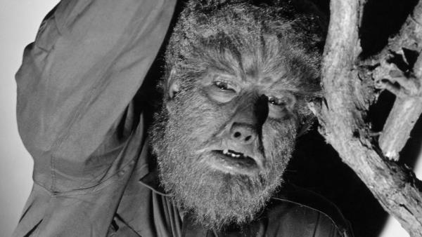 The Wolf Man download