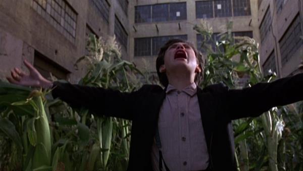 Kukuřičné děti 3: Přízrak města