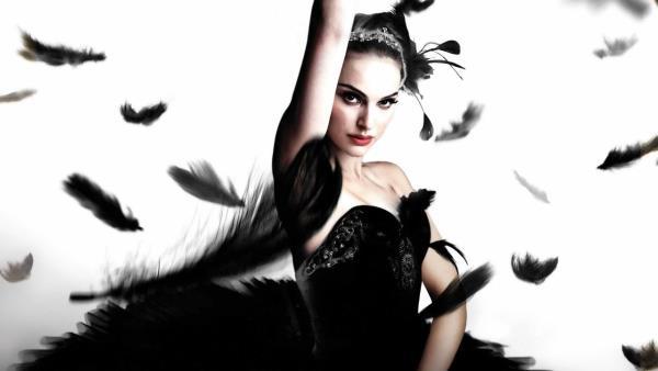 Cierna labut