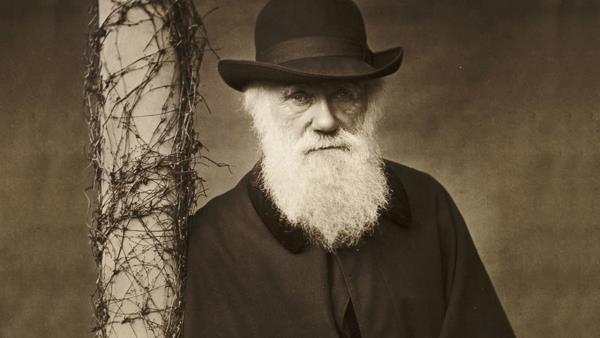 Co na to Darwin...